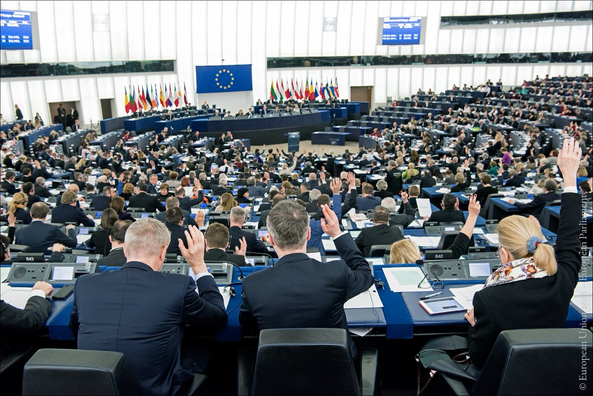 Ce aș face dacă aș fi europarlamentar