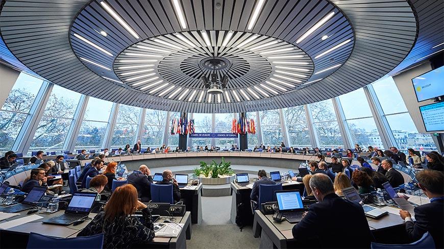Submission before the Committee of Ministers on the new action plan of the Romanian Government in respect to the cases of Bragadireanu v. Romania and Rezmives and Others v. Romania